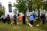 blessing of animals 14